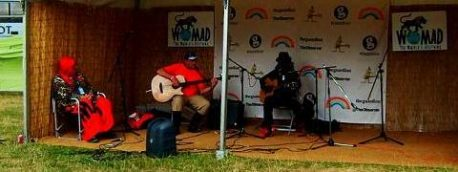 A picture of WOMAD 2013