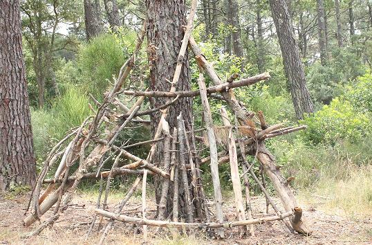 A picture of a bivouac