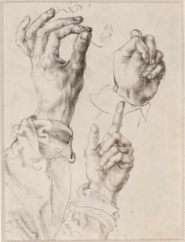 A picture by Albrecht Durer, Courtesy of the Courtauld Gallery