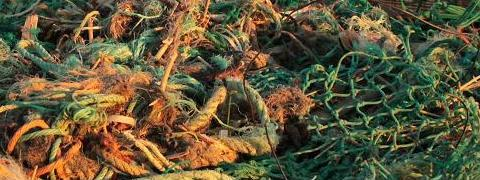 A picture of tangled ropes, nets, beach debris. By Sean Keenan