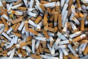 cigarette butts by freedigitalphotos.net Bill Longshaw