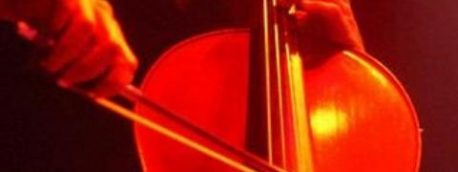 A cello by Tim Hall