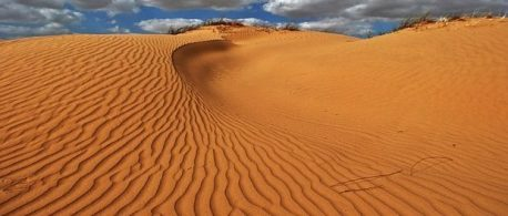dunes by skeeze