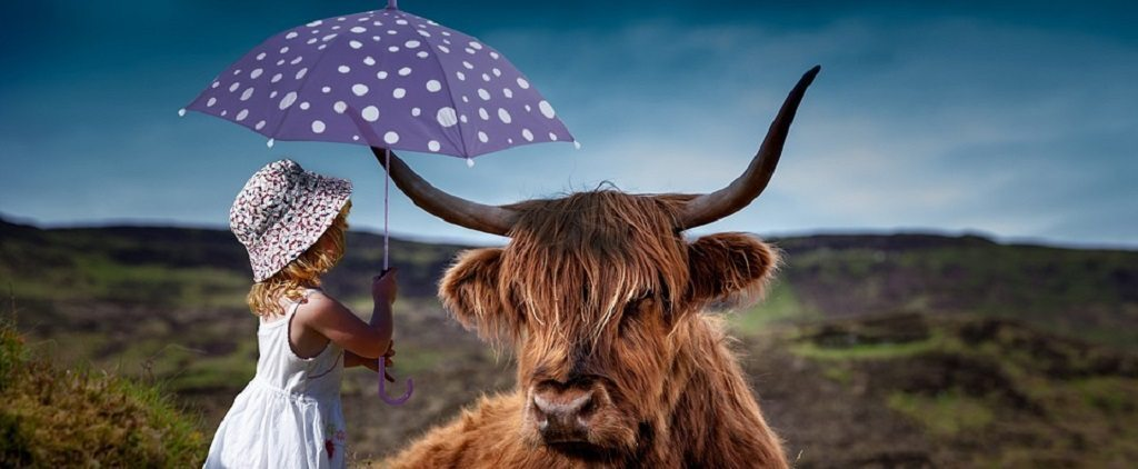 Girl and highland cow