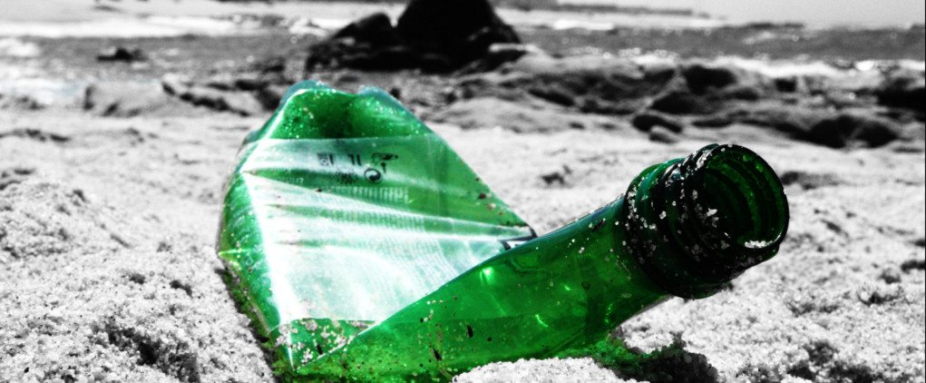 Plastic pollution doesn't just wash up on the beach - it is a threat to the whole of our environment.